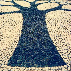 Stoner Tree